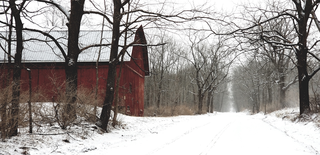 Quiet road in Yates County (photo)
